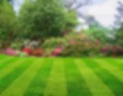 Beautiful-lawn-2.jpg