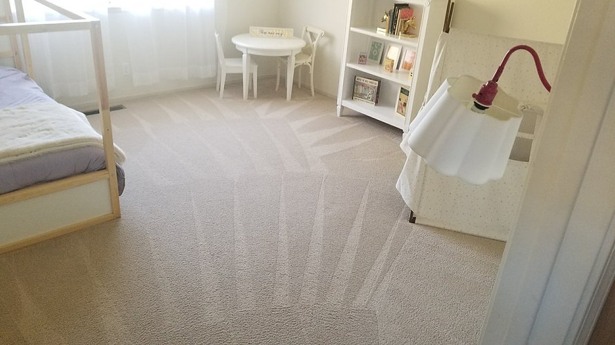 cleaned carpet.jpg