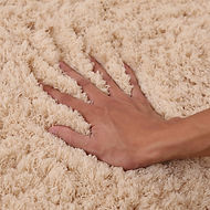 hands on dry carpet-2.jpg