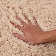 hands on dry carpet-2.jpg