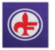 Fiorentina football shirt OPEL