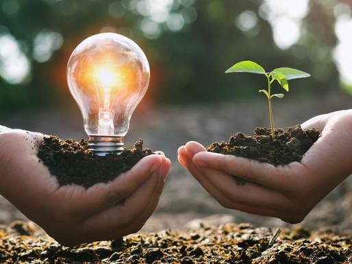 Conheça os benefícios ambientais da Energia Solar