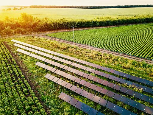 Agronegócio: energia solar para o campo vale a pena?