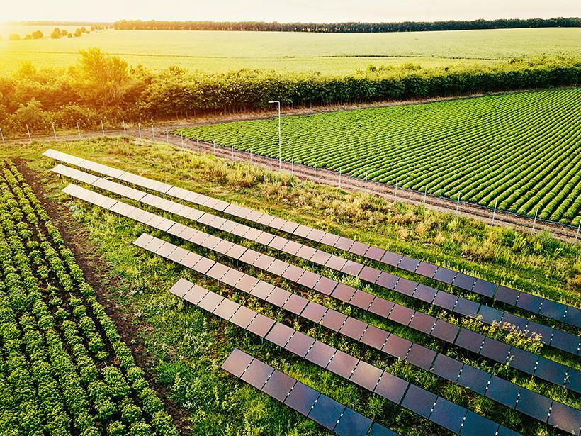 agronegocio-energia-solar-para-o-campo