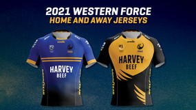 SRG Group partner with the Western Force