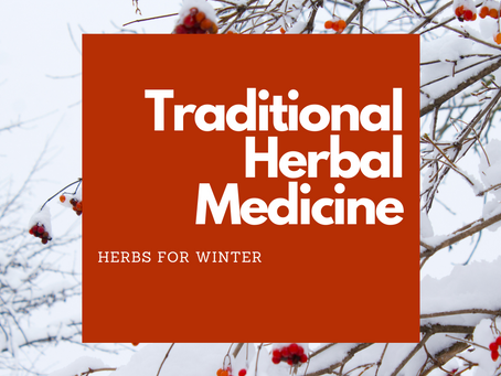 Herbs for Winter