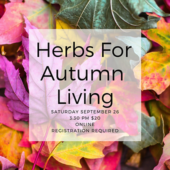 Herbs For Autumn Living.png