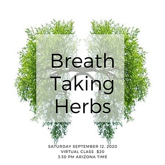 Breath Taking Herbs-2.png