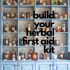 build your herbal first aid kit.png