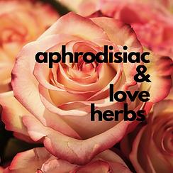 Aphrodisiacs.png