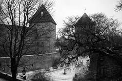 Tallinn, January 2017
