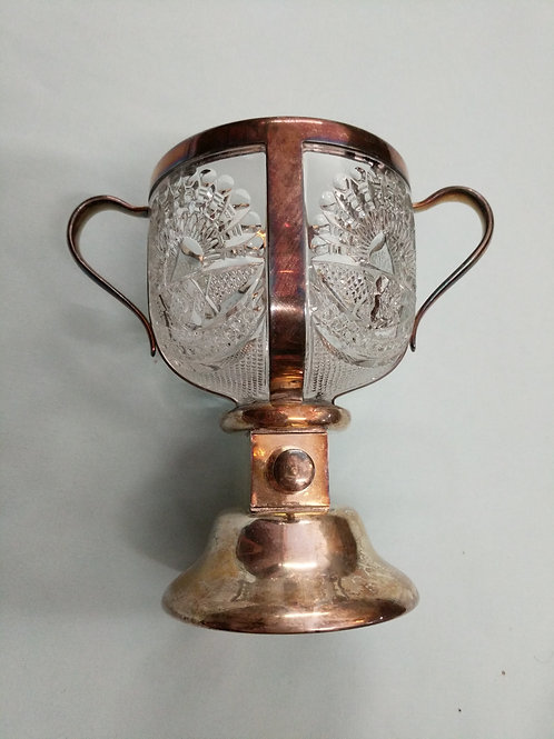 Silver and Glass Goblet