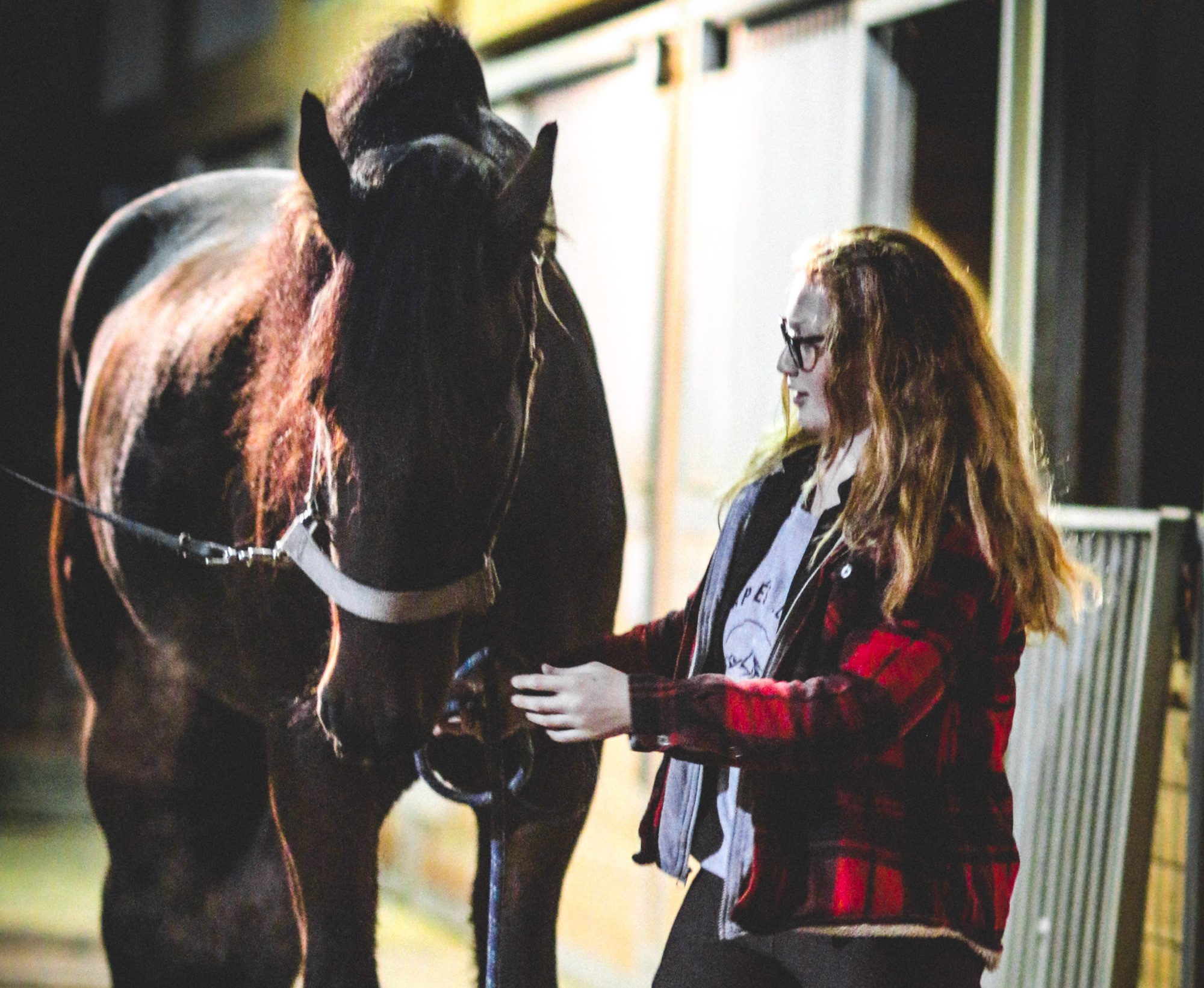 Lesson Package : AE Horse