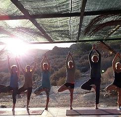 Chakra, Hatha and Pure Yoga retreat August 2017