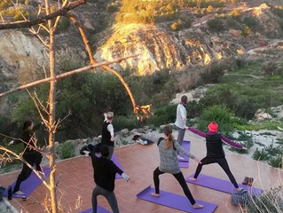 Hatha and Restorative Yoga Retreat
