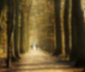 Winter Solstice pause image 122415.jpg