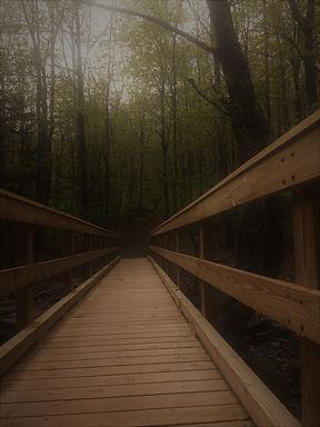 Hunter wooden bridge 2 sunscreen filter