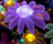 Flower of Light SU 071716.jpg