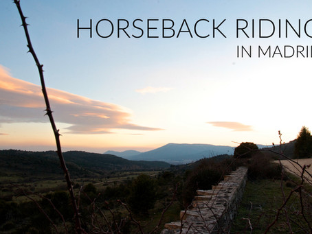 Horseback Riding In Madrid