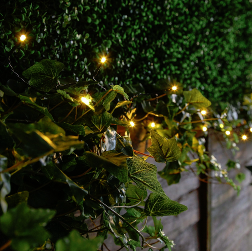 Christmas Bush Lights.Indoor Outdoor Fairy Lights Various Colours 5m