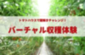 イメージ バーチャル収穫体験.jpg