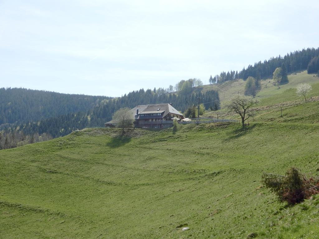20180422_Giersberg-Höfener Hütte_07