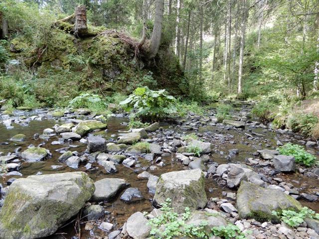 Rötenbachschlucht (1)