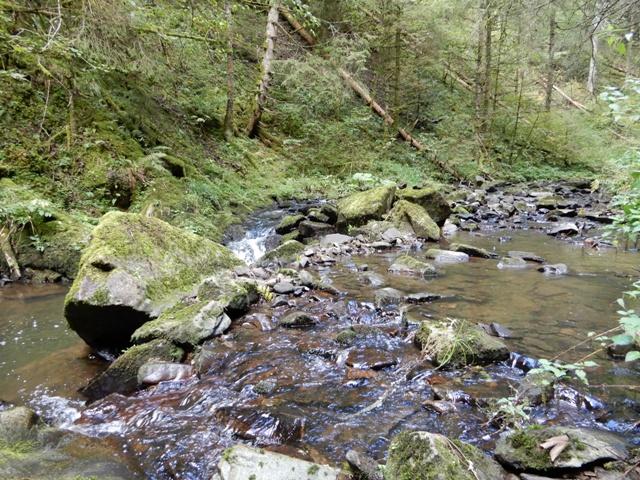 Rötenbachschlucht (15)