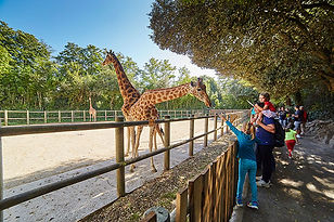 Zoo des Sables d'Olonne