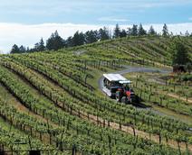 BEN-TractorTour-TT132_c2.jpg