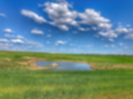 ranch 6.jpg