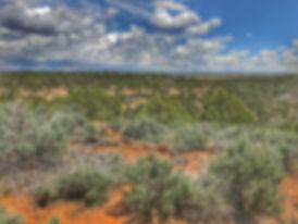 ranch 5.jpg