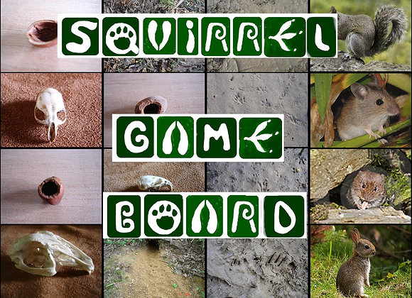 Squirrel Game  Board download