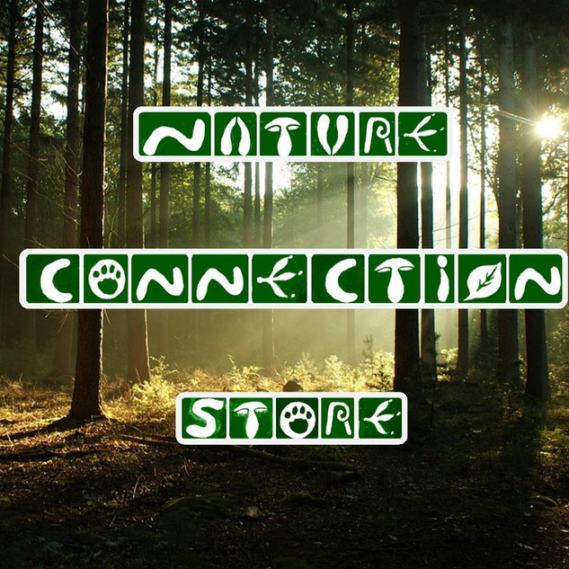 NATURE CONNECTION GAME DOWNLOADS