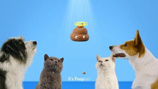 Halo Pet Food