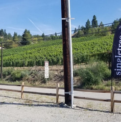 Zoom flags / flag banners supplied and installed for Singletree Winery.