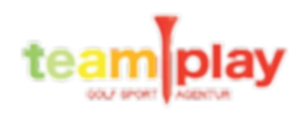 Teamplay-logo_frei_edited.png
