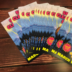 Spring flyer printing for Sierra Flooring.