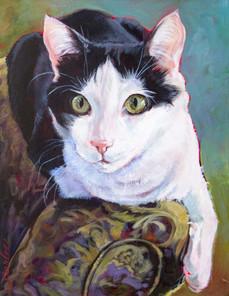 Good Cat Oreo-1-2 copy.jpg