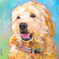 GOOD DOG CINNAMON-0008.jpg
