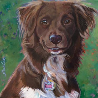 Good Dog Nikki.jpg