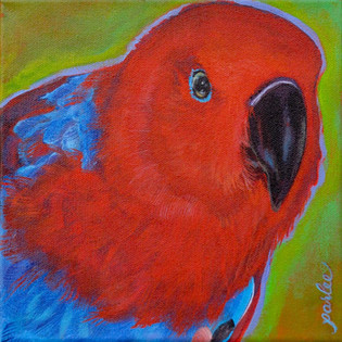 Good Bird Lucy.jpg