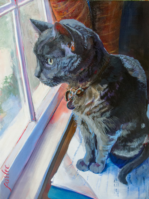 Good Cat Misha Final (1 of 1)-2.jpg