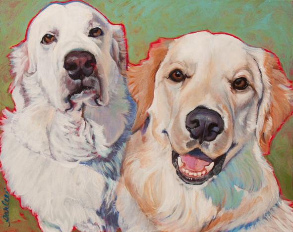 Good Dogs Coconut & Meatball.jpg