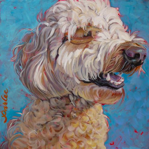 Good Dog Cooper.jpg