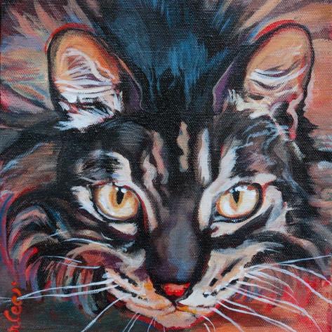 Good Cat Carmen.jpg