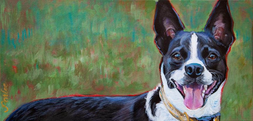 Good Dog Callie final-1.jpg