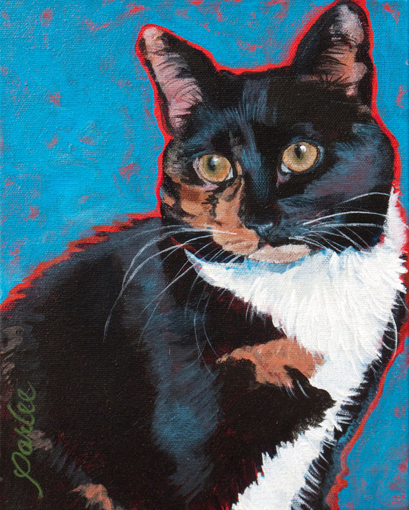 Good Cat Houdina.jpg