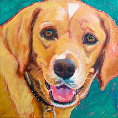 Good Dog Mugsy.jpg