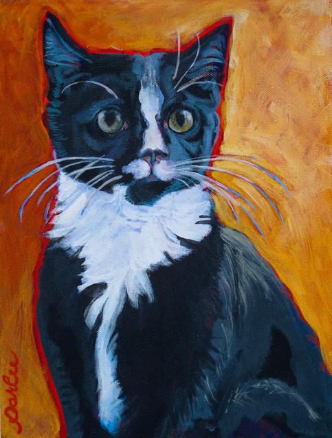 Good Cat Sherwin.jpg